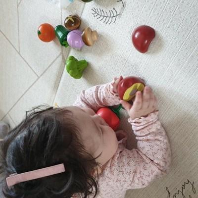 [하페]싱싱한 과일 소품