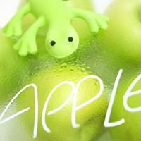new 차량용 도마뱀 방향제 - 그린 애플