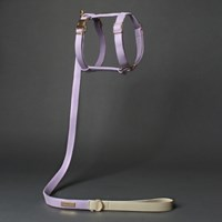 Sweat Harness Purple