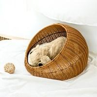 강아지 집 라탄 쿨 펫돔 하우스