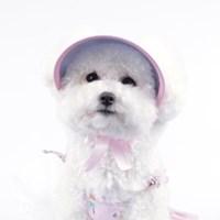 플로랄 썬캡 - 핑크