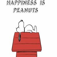 [Peanuts] 6공 다이어리 A5_해피 스누피 (화이트)