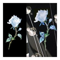 Single Rose Inlay Sticker [헤드,바디사용]