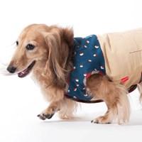 [MD��ȹ]2014 F/W KEYWORD FOR CAT&DOG
