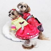 CAT&DOG HOLIDAY STYLE !