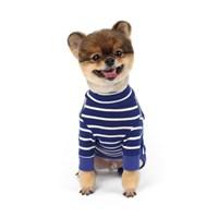 매일의 강아지 패션|40%