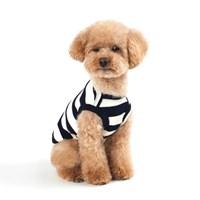 매일의 강아지 패션|35%~