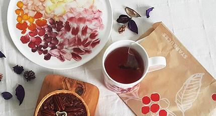 봄꽃을 담은 그릇, 트위그뉴욕 <span style=color:red>~20%</span>