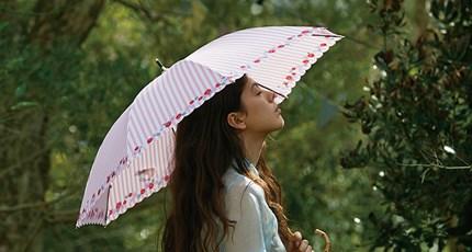 비오는 날, 햇살이 비추는 날|