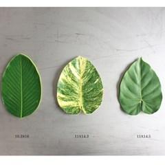 나뭇잎 코스터 leaves coaster [3types]