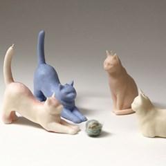 Street Cat - 스트레칭 훈치