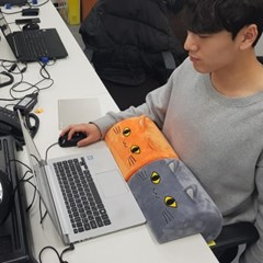 [MIEVO]자세교정용 기능성 배받이쿠션(미에보)