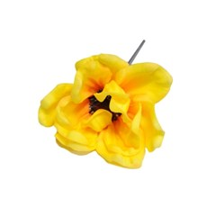 yellow anemone flower pen