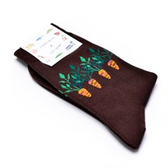 [Organic cotton] Jeju artye Carrot