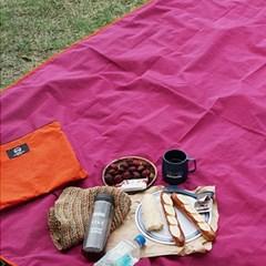 summerlike pink picnic mat