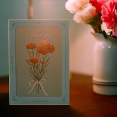 DEARMOMENT CARD_carnation