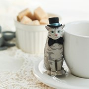 에이미스 캣 미니피규어_Amy's Cat(박스)
