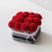 비누꽃 카네이션 BOX 기프트 세트