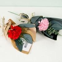 (선물포장)미니꽃다발 소프카네이션 2p set