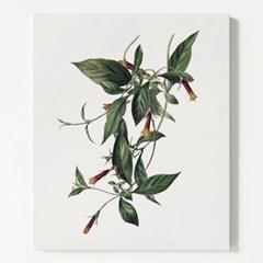 캔버스 꽃 식물 인테리어 액자 보타니컬 아트 플라워F