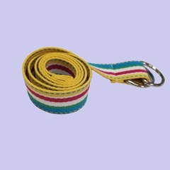 multi Stripe ring Belt (4color)