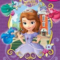 DISNEY SOFIA THE FIRST : MY BUSY BOOKS