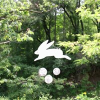 Rabbit in the hidden forest-MOBILE