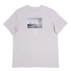 Picture T-shirts_gray