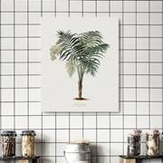 캔버스 식물 인테리어 액자 빈티지 보테니컬 나무A