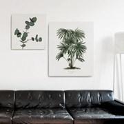 캔버스 프로방스 식물 그림 액자 빈티지 보테니컬 나무B