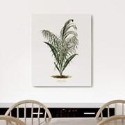 캔버스 식물 야자수 그림 액자 빈티지 보테니컬 나무C
