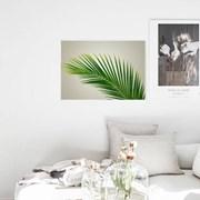 북유럽풍 식물액자 나뭇잎 보타니컬 거실 포스터