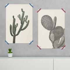 20종 패브릭 선인장 포스터 액자 / 식물 포스터 액자