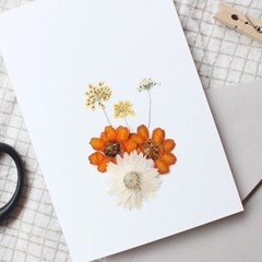 PRESS FLOWER (orange)
