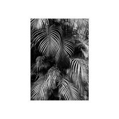 에포크 -보타니컬l no.1(50*70) Framed