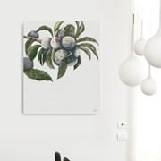 캔버스 보테니컬 아트 식물 그림 대형 액자 서양 자두