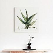 캔버스 북유럽 식물 그림 대형 액자 소품 알로에 베라