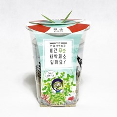 한컵새싹농장_무순