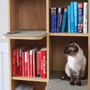 투인캣책장 TWO IN CAT BOOKCASE(전용쿠션포함)