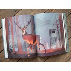[다락룸] Wild Animals of the North by Flying Eye Books