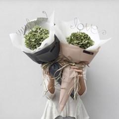 그린수국 꽃다발