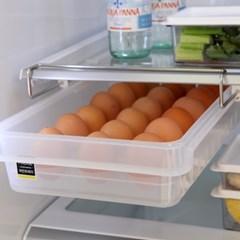냉장고 레일 에그트레이 2호(21구)