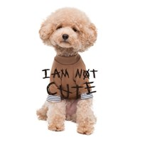 'i am not cute' - brown