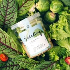 [샐러딩] Salad&Snack Set (샐러드3끼+프리바이오틱스3팩+견과류1팩)