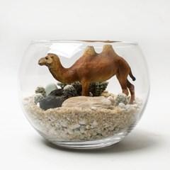 사막의 낙타(L) 다육이테라리움
