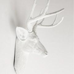 [클라세]애니멀헤드 사슴머리(헌팅 트로피) White