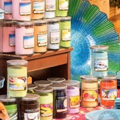 양키캔들[정품] 글라스필라 바하마 브리즈 (Bahama Breeze)