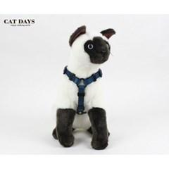 반려묘(고양이)용 레트로 블랙하네스+리드줄세트 블루