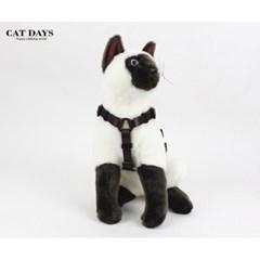 반려묘(고양이)용 레트로 블랙하네스+리드줄세트 브라운