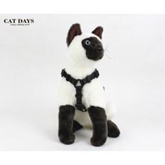 반려묘(고양이)용 레트로 블랙하네스+리드줄세트 블랙